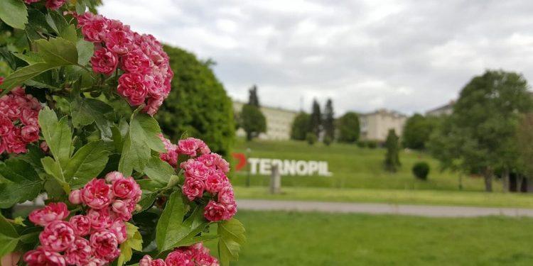 фото Тернопіль